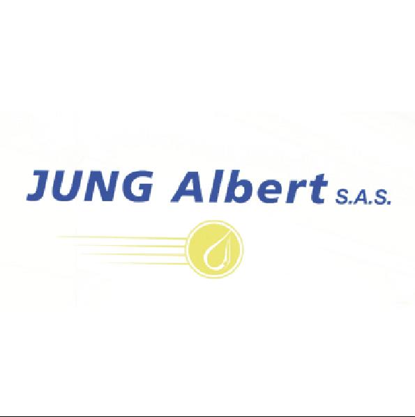 logo jung albert