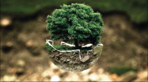 selestat habitat déco dévelloppent des actions qui ont du sens pour le respect de l'environnement